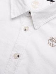 Timberland - LONG SLEEVED SHIRT - shirts - white - 3