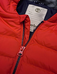 Timberland - PUFFER JACKET - puffer & padded - bright red - 2