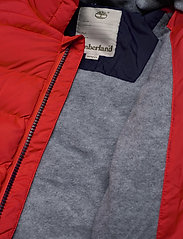 Timberland - PUFFER JACKET - puffer & padded - bright red - 4