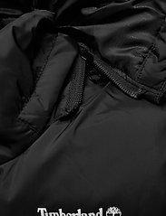 Timberland - PUFFER JACKET - puffer & padded - black - 6