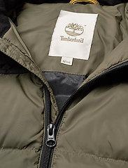 Timberland - PUFFER JACKET - dunjakker & forede jakker - khaki - 3