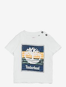 SHORT SLEEVES TEE-SHIRT - short-sleeved t-shirts - unique