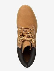 Timberland - 6 Inch Premium Boot - buty zimowe - yellow - 3
