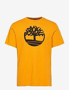SS K-R Brand Tree T - chemises à manches courtes - dark cheddar