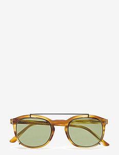 TO0181 - okulary przeciwsłoneczne w kształcie litery d - 55n -coloured havana / green