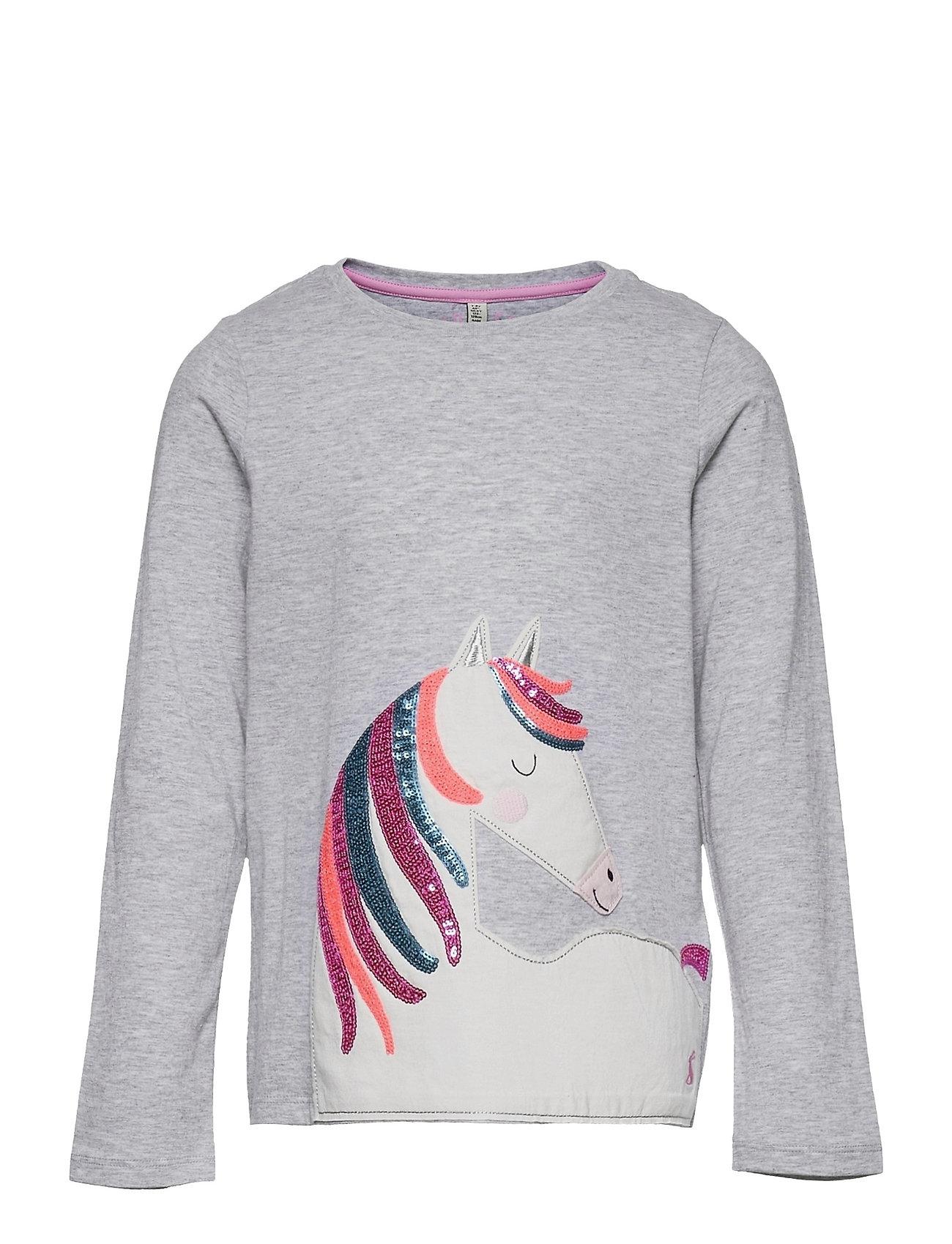 Ava Langærmet T-shirt Grå Joules