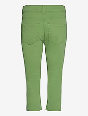 Tom Tailor - Tom Tailor K - pantalons capri - sundried turf green - 1