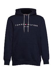 BT-TOMMY LOGO HOODY - SKY CAPTAIN