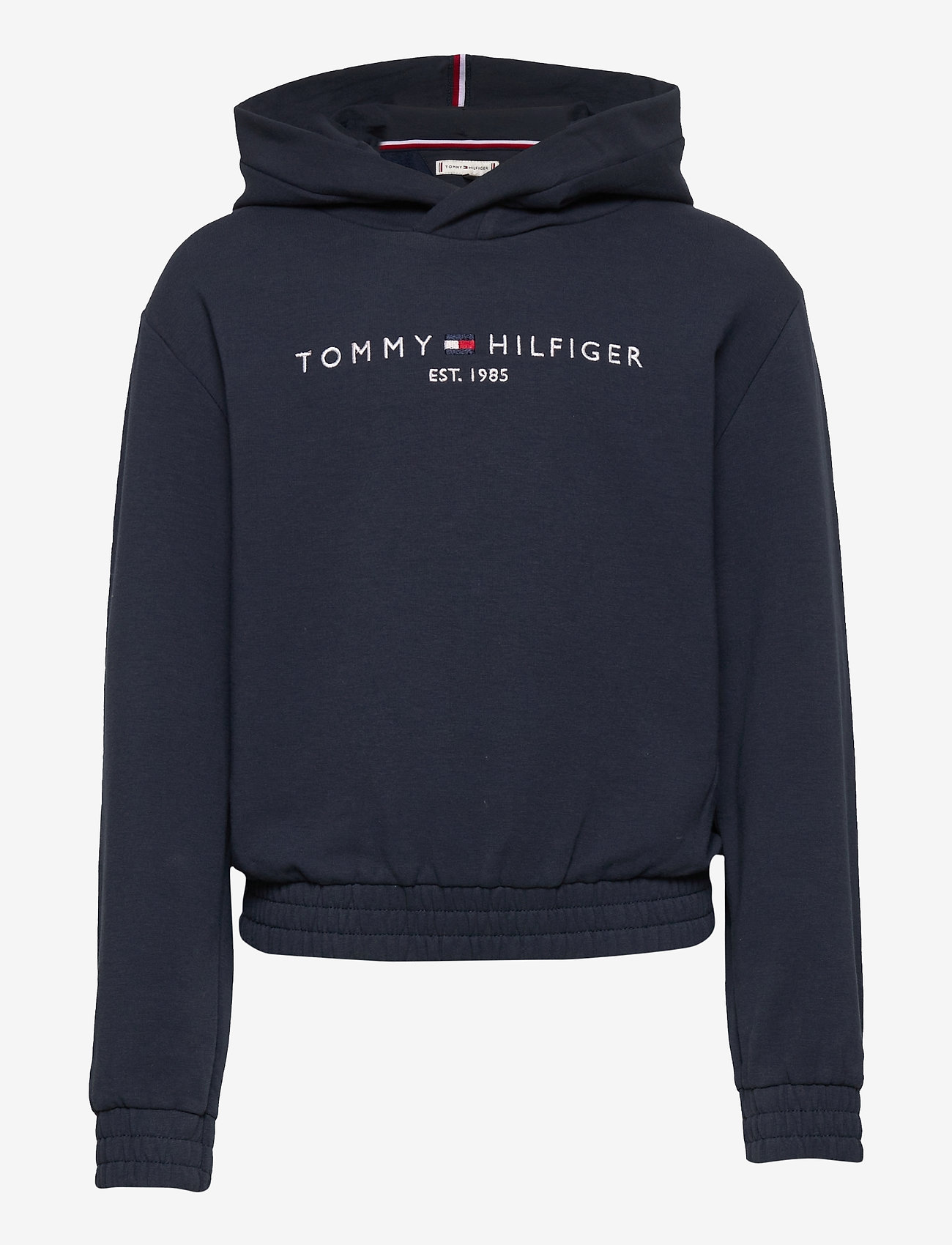 Tommy Hilfiger - ESSENTIAL HOODED SWEATSHIRT - kapuzenpullover - twilight navy - 0