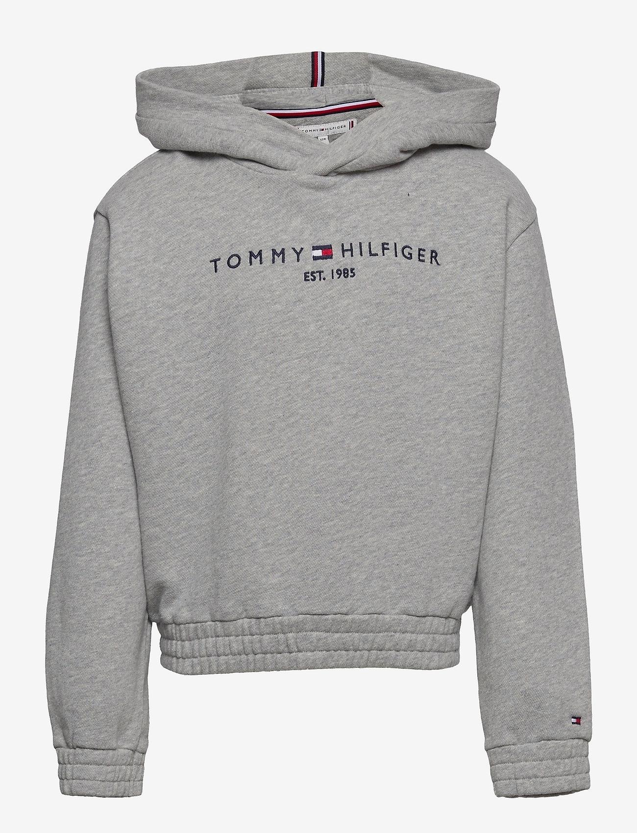 Tommy Hilfiger - ESSENTIAL  HOODIE - hoodies - grey heather - 0