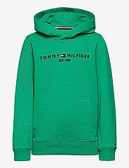 Tommy Hilfiger - ESSENTIAL HOODIE - hættetrøjer - cosmic green - 0
