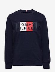 Tommy Hilfiger - GLOBAL STRIPE GRAPHIC TEE L/S - sweatshirts - twilight navy - 0