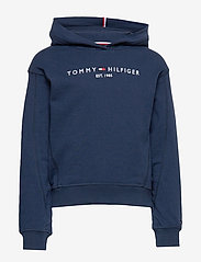 Tommy Hilfiger - ESSENTIAL HOODED SWE - hoodies - twilight navy - 0