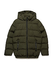 ESSENTIAL PADDED JACKET - FOREST NIGHT