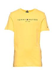 ESSENTIAL HILFIGER T - ASPEN GOLD