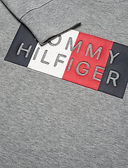 Tommy Hilfiger - GLOBAL STRIPE GRAPHIC TEE L/S - sweatshirts - mid grey htr - 2