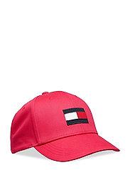 BIG FLAG CAP - VIRTUAL PINK