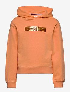 TOMMY FOIL LABEL HOODIE - hoodies - melon orange
