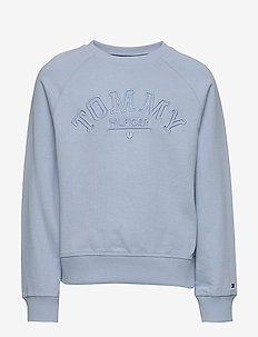 TONAL EMBROIDERED GRAPHIC CREW - sweatshirts - calm blue