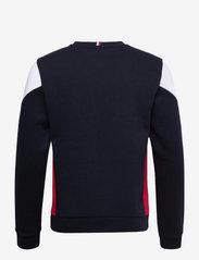 Tommy Sport - BLOCKED SEASONAL CREW - clothing - desert sky - 2