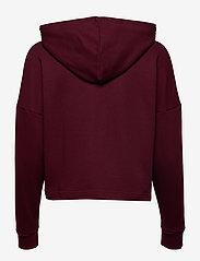 Tommy Sport - CROPPED HOODY LOGO - hoodies - deep rouge - 1