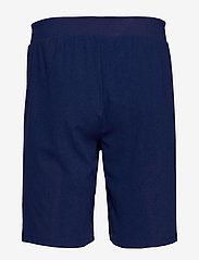 Tommy Sport - WARPKNIT SHORT - training shorts - blue ink - 1