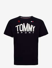 Tommy Sport - ICONIC TEE - sports tops - desert sky - 0
