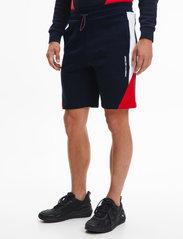 Tommy Sport - BLOCKED SEASONAL SHORT - casual shorts - desert sky - 0