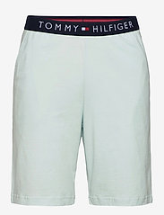 Tommy Hilfiger - CN SS SHORT JERSEY SET - pyjamas - desert sky/luminous blue - 2