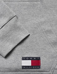Tommy Hilfiger - HOODIE LWK - overdele - grey heather - 3