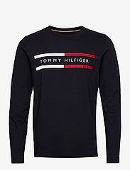 Tommy Hilfiger - CORP CHEST STRIPE LS TEE - long-sleeved t-shirts - desert sky - 0