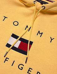 Tommy Hilfiger - TOMMY FLAG HILFIGER HOODY - hoodies - sun ray - 2