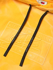 Tommy Hilfiger - LH GMD FLAG HOODY - hoodies - marigold yellow - 2