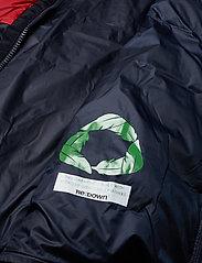 Tommy Hilfiger - NAOMI RECYCLED DOWN JKT - padded jackets - rwb colour block - 5
