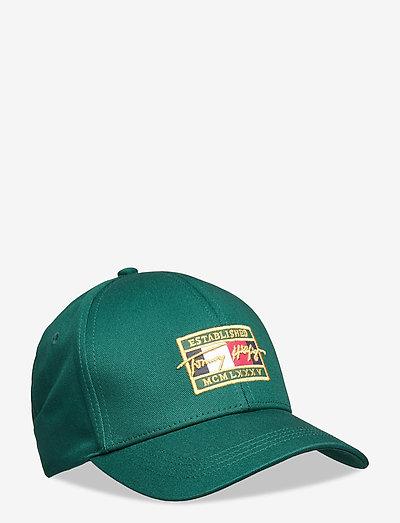 TH PATCH SIGNATURE CAP - bonnets & casquettes - rural green