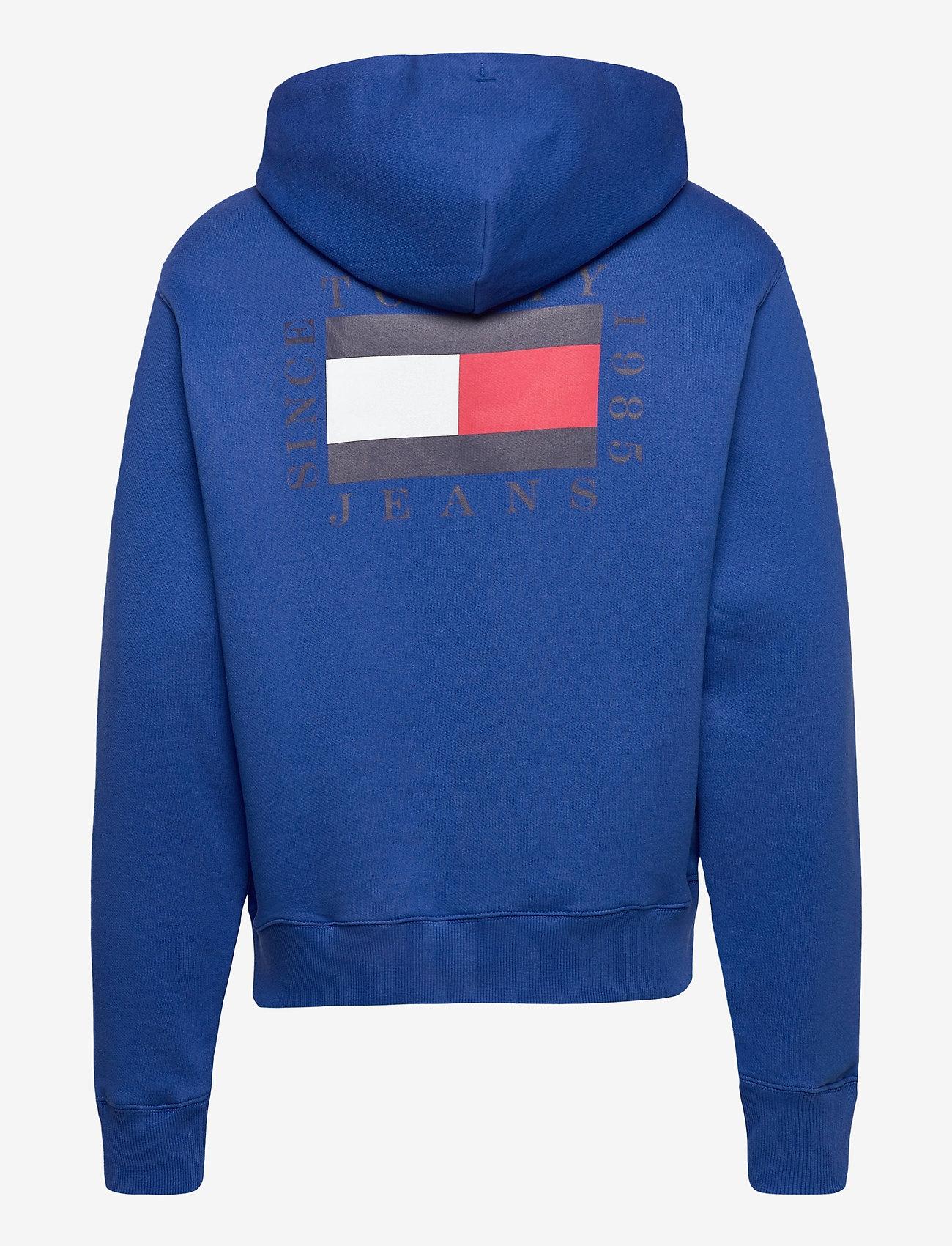 Tommy Jeans - TJM HALF ZIP HOODIE - hoodies - providence blue - 1