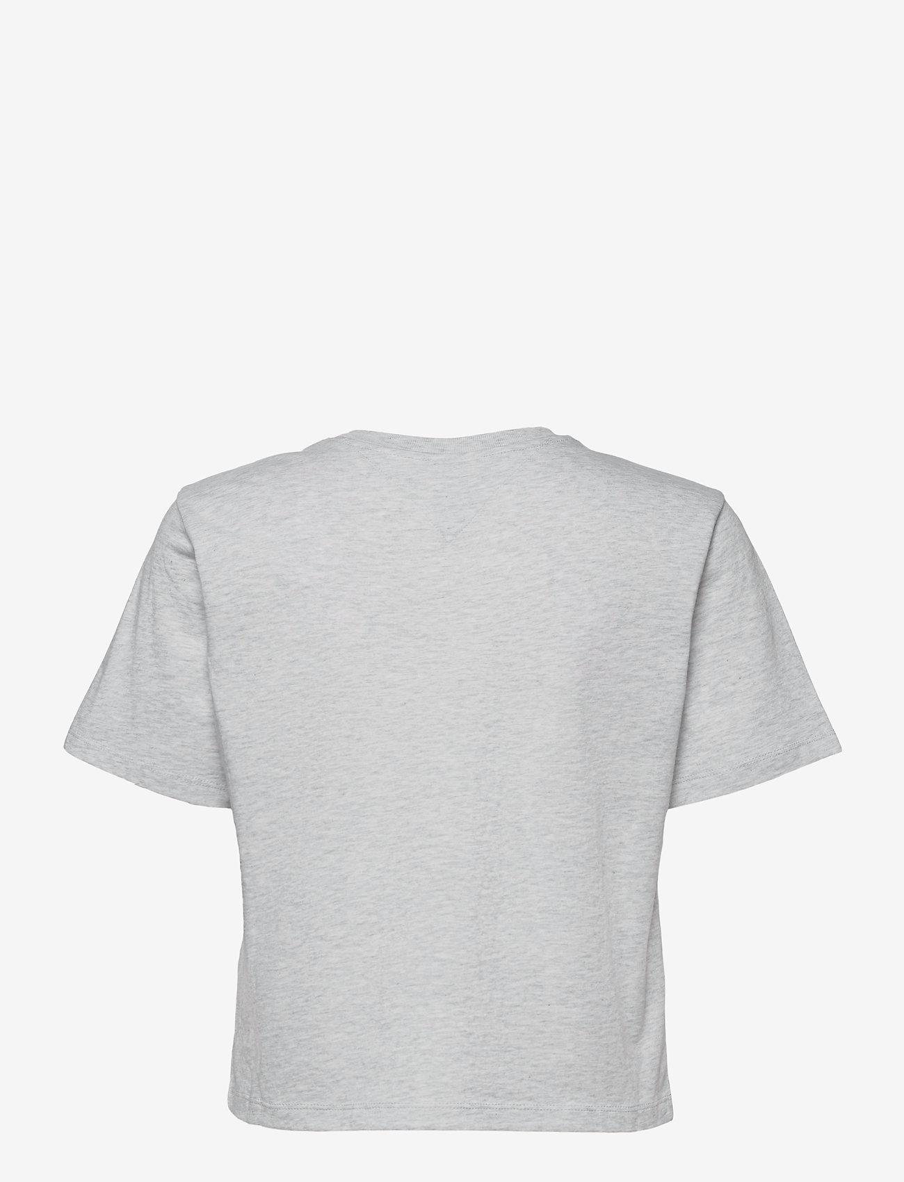 Tommy Jeans - TJW BXY CROP LINEAR LOGO TEE - crop tops - silver grey htr - 1