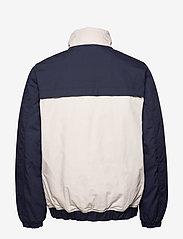 Tommy Jeans - TJM COLORBLOCK JACKET - padded jackets - black iris/multi - 5