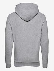 Tommy Jeans - TJM STRAIGHT LOGO HOODIE - hoodies - lt grey heather - 1