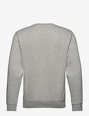 Tommy Jeans - TJM REGULAR FLEECE C NECK - kläder - lt grey htr - 1
