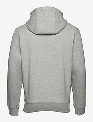 Tommy Jeans - TJM REGULAR FLEECE HOODIE - hoodies - lt grey htr - 1