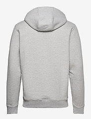 Tommy Jeans - TJM TIMELESS TOMMY HOODIE 2 C - hoodies - silver grey htr - 1