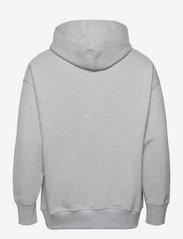Tommy Jeans - TJM TOMMY BADGE HOODIE - hoodies - silver grey htr - 1