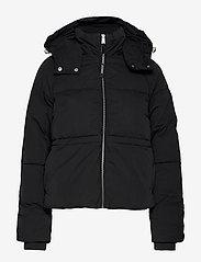 Tommy Jeans - TJW TOMMY DETAIL PUFFA JACKET - padded jackets - tommy black - 1