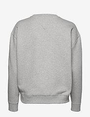Tommy Jeans - TJW TOMMY BADGE CREW - sweatshirts - lt grey htr - 1
