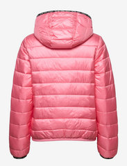 Tommy Jeans - TJW QUILTED TAPE HOODED JACKET - winter jackets - botanical pink - 1