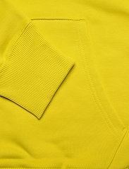 Tommy Jeans - TJM SMALL FLAG HOODIE - hoodies - valley yellow - 3