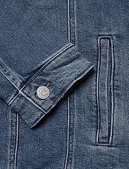 Tommy Jeans - REGULAR TRUCKER JACKET LMBC - jeansjackor - lincoln mb com - 3