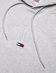 Tommy Jeans - TJM LIGHTWEIGHT TOMMY HOODIE - hoodies - silver grey htr - 2