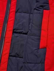 Tommy Jeans - TJM ESSENTIAL PADDED JACKET - fodrade jackor - deep crimson - 5